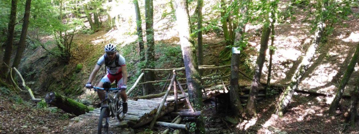 La foresta dell'Acquerino – Intersezionale CAI sez. Pistoia e Lucca – MTB