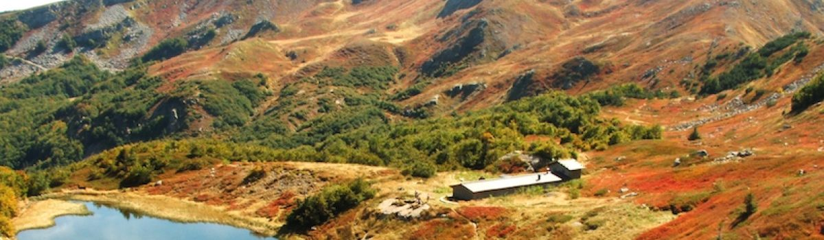 Cromatismi d'autunno, Anello val Fegana, foce di Campolino, Alpe Tre Potenze, foce a Giovo