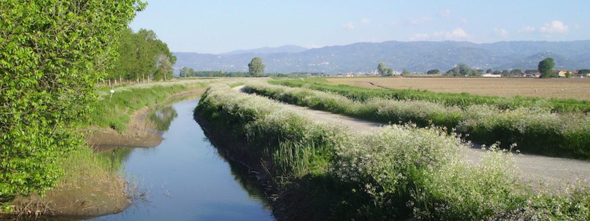 Pasquetta sull'argine del fiume Pescia