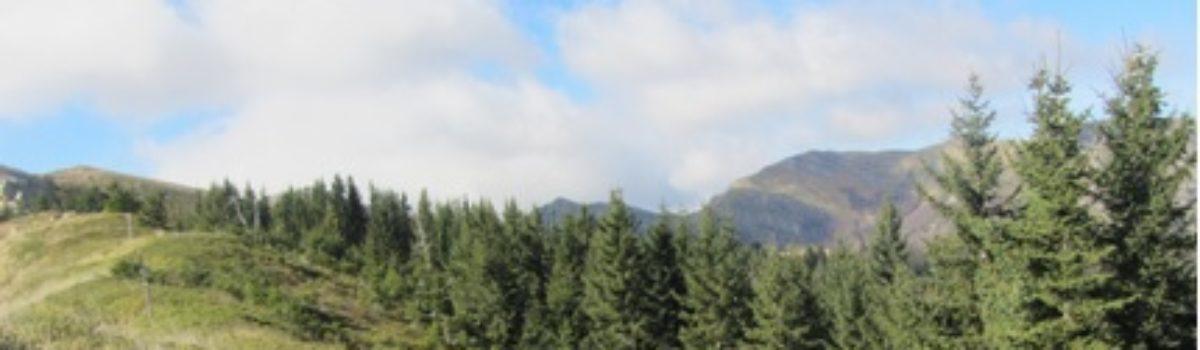 Trekking nella Riserva Naturale di Campolino e Orto Botanico Forestale dell'Abetone – Alta val Sestaione