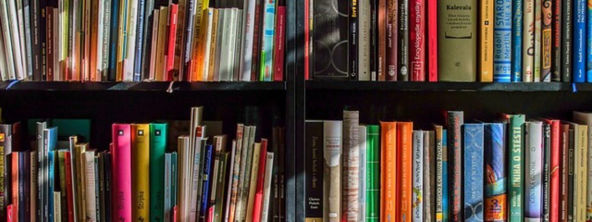 Biblioteca Sezione