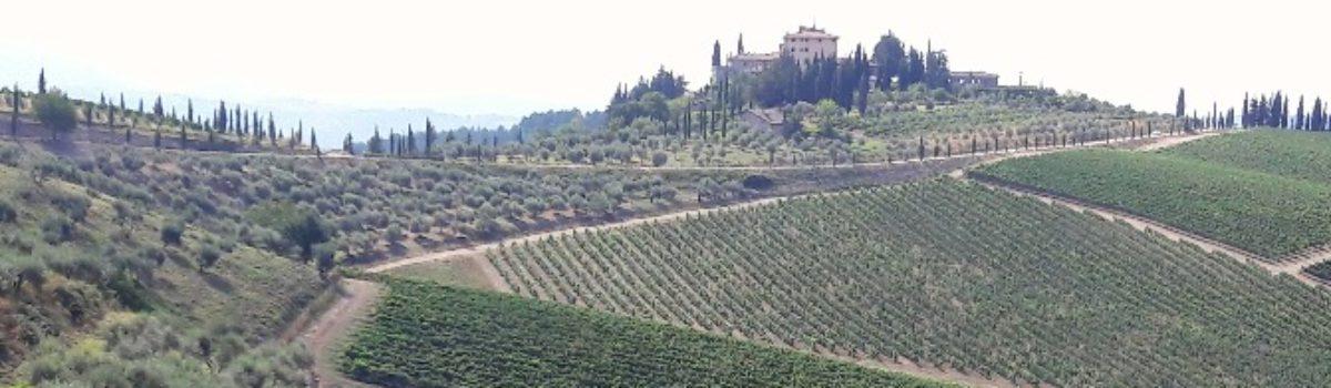 Escursione mtb al Parco naturale Monte San Michele e colline del Chianti