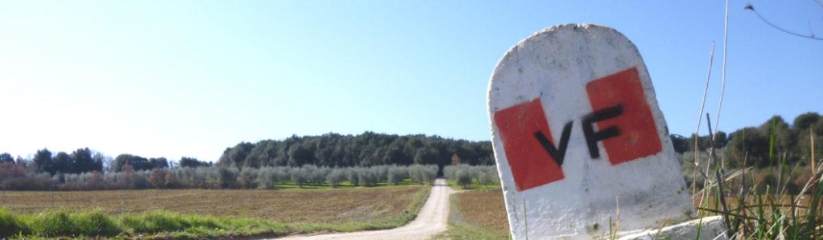 Sulla Via Francigena, da Monteriggioni a Siena