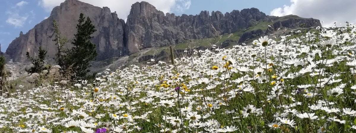 La nostra passione per la Montagna non si ferma