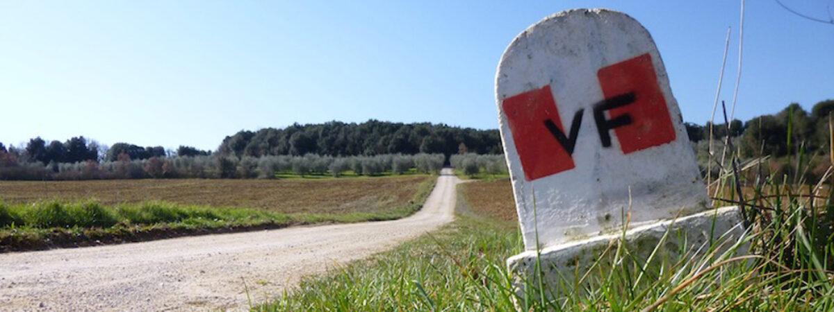 Escursione sulla Via Francigena 34^ tappa: SIENA – PONTE D'ARBIA